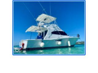 Boats Luhrs Puerto Rico