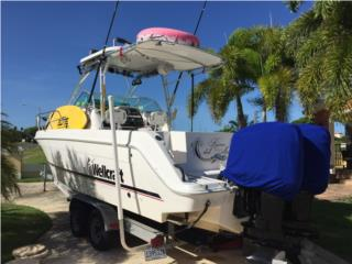 Boats Wellcraft Puerto Rico