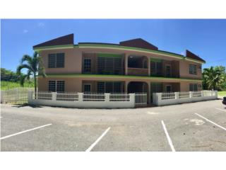 Stella Puerto Rico