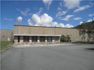 Centro Comercial-Plaza Cayey Shopping Center Puerto Rico