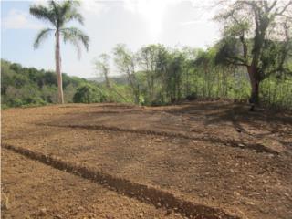 Campo Rico Puerto Rico