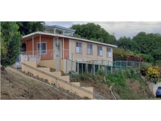 Casa en madera, barrio Candelaria Lajas $300