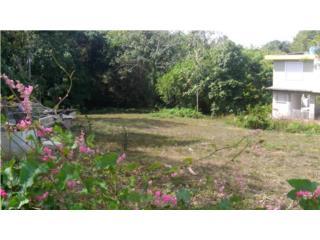 Barrio Santana Carr 120 km 10 Sabana Grande