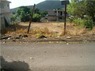 Solar vacante Caimital Bajo Guayama