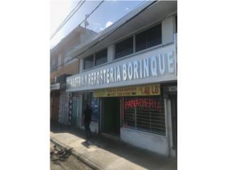 Edificio comercial con negocio operando