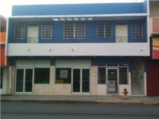 Venta Edificio Comercial Mixto Pueblo Aguada