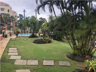 Caribbean Oasis