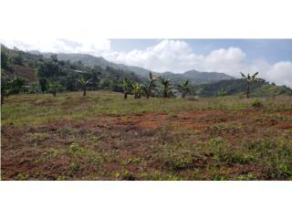 Precioso terreno en Cañabón