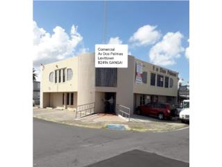 Local Comercial 2 Niveles Levittown