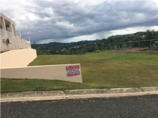 Leguizamo Puerto Rico