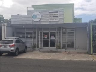 Comercial Building Caparra Terrace San Juan