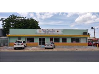 Vendo Propiedad Comercial 1ra Secc. Levittown