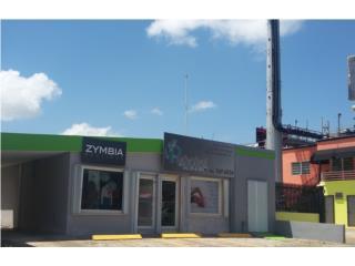 Propiedad Comercial Ave. Iturregui, San Juan