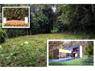 Beverly Hills 1 Acre Lot for Sale in Guaynabo