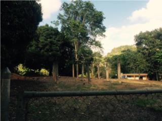 Terreno comunidad Seguí