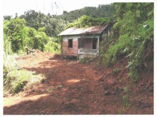 FINCA AGRICOLA DE 21 CUERDAS EN GUAYANILLA