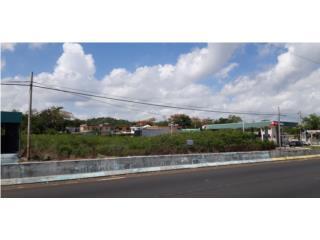 Solar en carretera PR-2, Bo. Santana, Arecibo