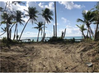 Land with Private Beach Access
