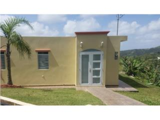 Bauta Arriba Puerto Rico