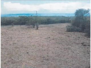 Venta lote #706 por tasación,Villa Borinquen