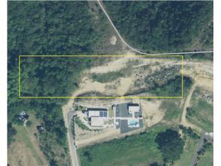 Terreno 4913 m/c (1.21-acre) barrio Guayabo