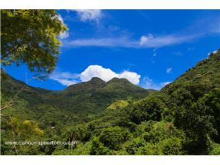 Finca en falda de Tres Picachos en Jayuya