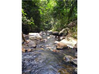 Finca con río Vista Panorámica