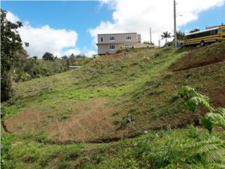 Solar en la vaqueria urb las colinas 2002 met