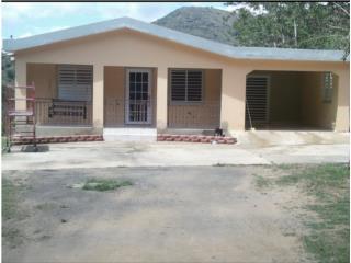 Casa en Bo La Plata Aibonito