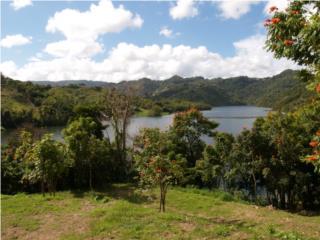 Dos Cuerdas a Orillas Lago La Plata