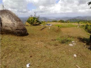 Venta de terreno en San Lorenzo Barrio Cerró
