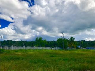 Terreno de Esquina, Plano y Cercado/MAS 1crd