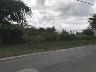 SE VENDE FINCA Barrio Florida, Vieques