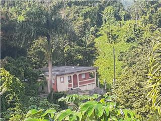 Casa ubicada en el campo. 1/2 cuerda terreno