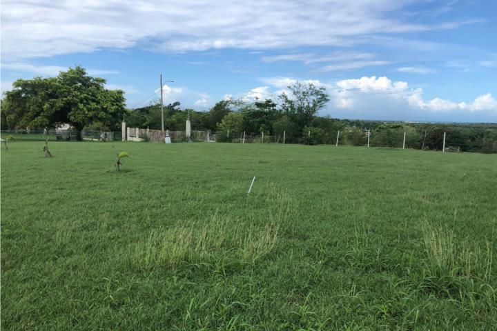 Finquita Betances Puerto Rico