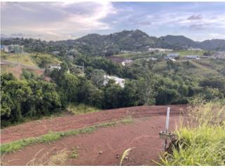 Barrio Barros Orocovis sector las colinas