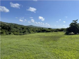 Vieques Properties - Land in Puerto Real #2
