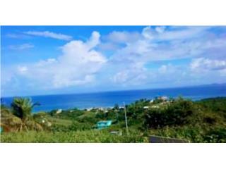 Vista panorámica Villa Borinquen 4,480m2