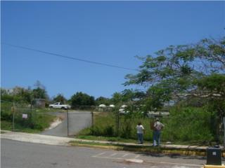 Terren 5640mt con Alcant Agu Elect a
