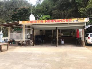 Negocio ubicaco en la Carr 119 Puertos Camuy