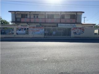 Barrio Sabana Hoyos Arecibo - Casa y Negocio