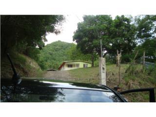 casa con 12 cuerdas de terreno barrio santa