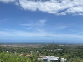 El monte, Ponce Puerto Rico