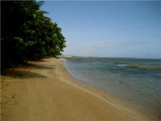 BEACHFRONT-PRIVATE PATIO-AMAZING OCEAN VIEWS