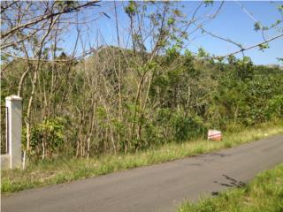 Terreno en Bayaney Hatillo solo $25,000