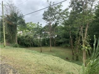 Solar 800 metros cuadrados en Reparto Bonet.