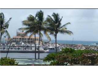 Harbour View!