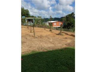 Solar 2,000 metros en Barrio Unibon Morovis