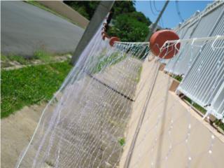 trasmallo de superficie , Puerto Rico