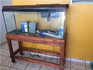 Pecera 55 galones $225 ganga!!!, Puerto Rico
